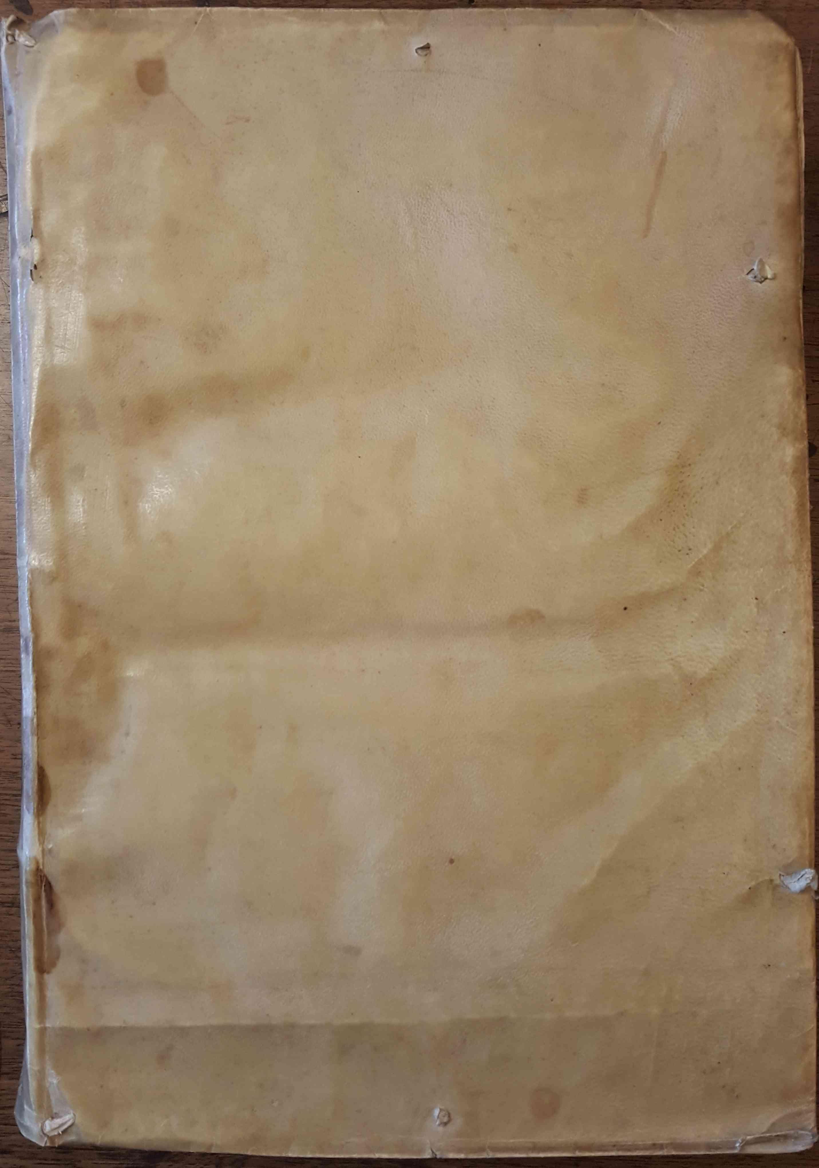 ib00100000_02012981 parchment